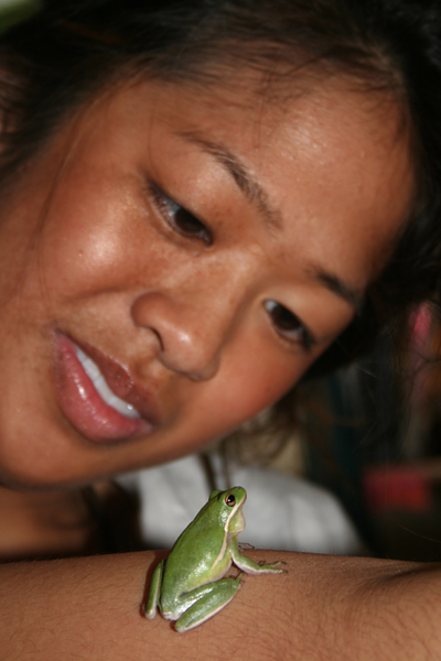 Angela Cao '11 plays with her tree frog Rico T-Pain Suave. - Michelle Fournier