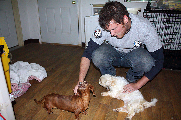 PALS Puppies