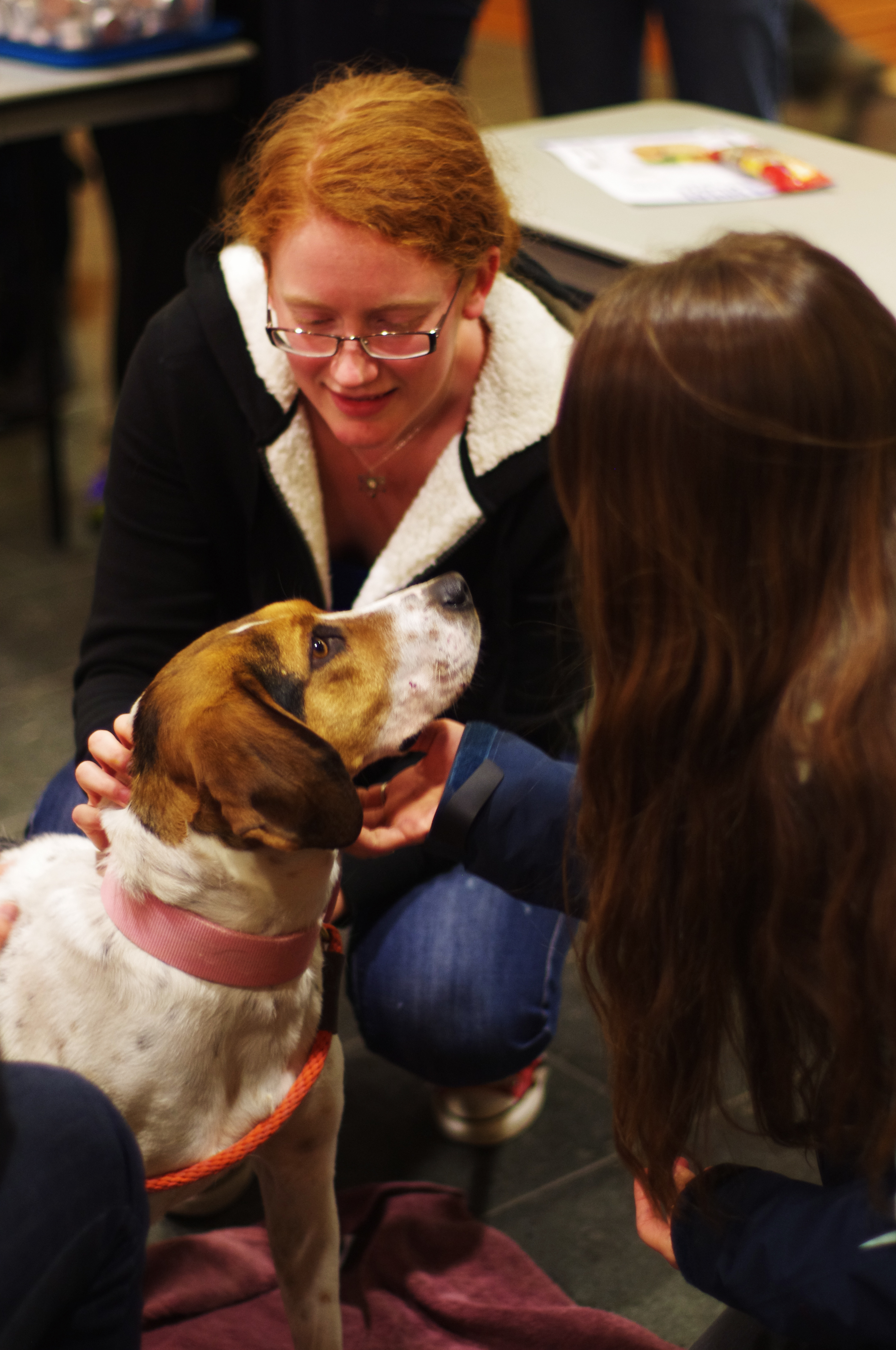 Christie Peterson and Emiliy Stuchiner (both '15) play with puppies at the Wellness Fair Tuesday evening at the JRC. Photo by Joanna Silverman.