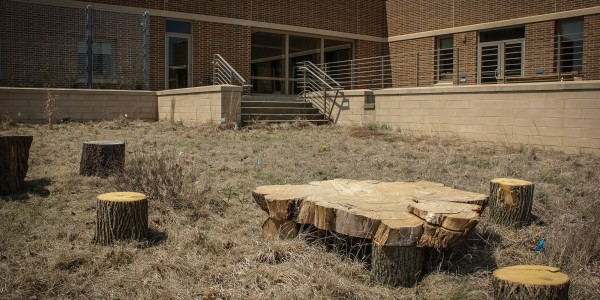The south side of the library already has tables, made from reclaimed timber, set up in circles in the area planned to be the staging area.