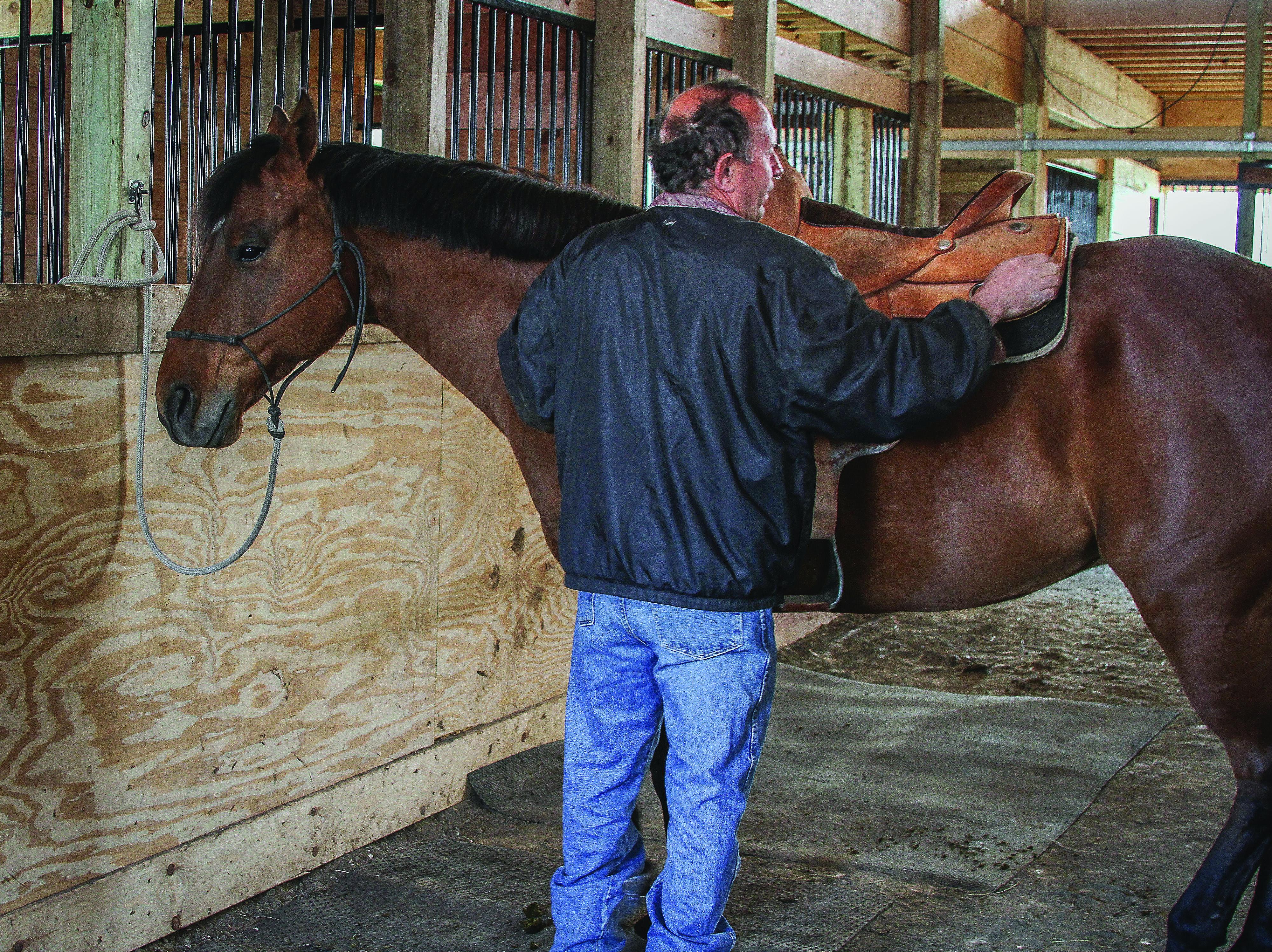 Owner of VVV Training Don van Dyke saddles his horse, Charlie, in the newly finished indoor arena. Photograph by Avery Rowlison.