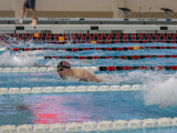 The men's and women's swimming and diving teams have gotten off to a hot start this season. Photo by Sno Zhao
